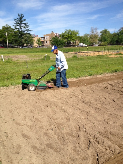 Mr. James tilling the garden in preparation of planting -- photo by Kendall Bentz.